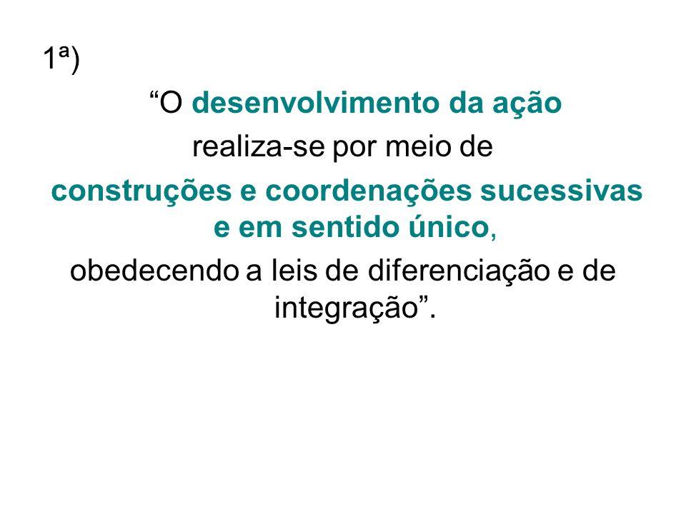 1ª) O desenvolvimento da ação realiza-se por meio de construções e coordenações sucessivas e em sentido único, obedecendo a leis de diferenciação e de