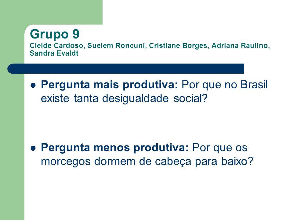 Grupo 9 Cleide Cardoso, Suelem Roncuni, Cristiane Borges, Adriana Raulino, Sandra Evaldt Pergunta mais produtiva: Por que no Brasil existe tanta desig