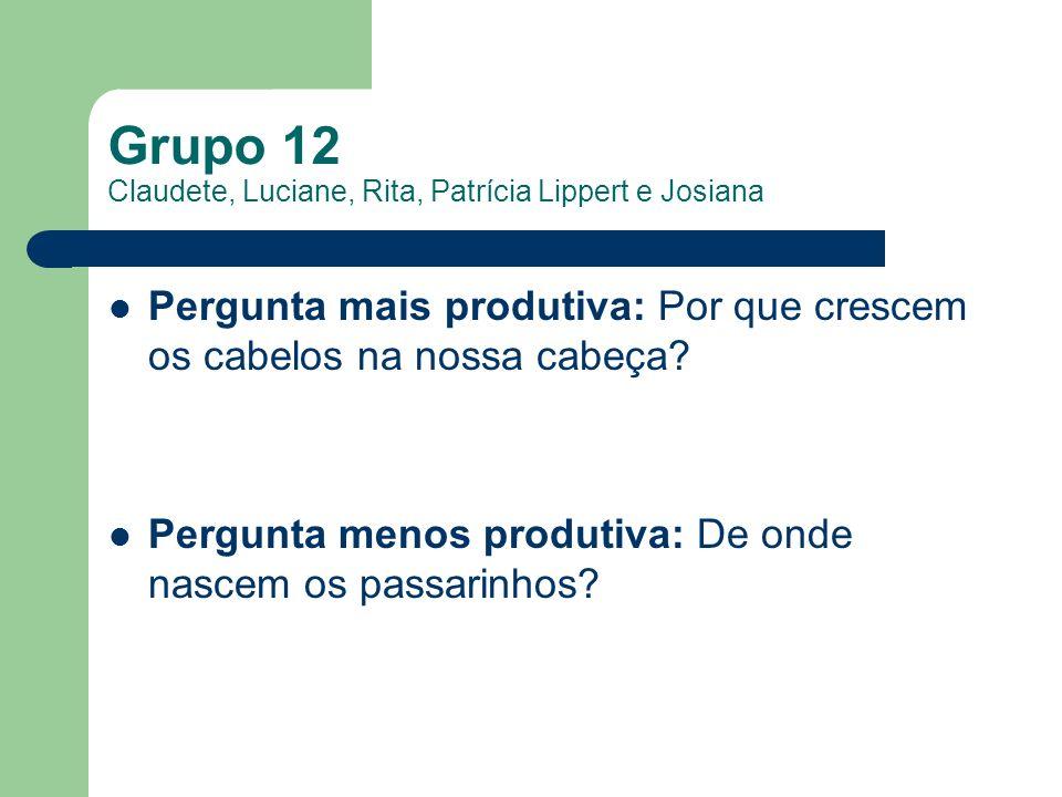 Grupo 12 Claudete, Luciane, Rita, Patrícia Lippert e Josiana Pergunta mais produtiva: Por que crescem os cabelos na nossa cabeça? Pergunta menos produ