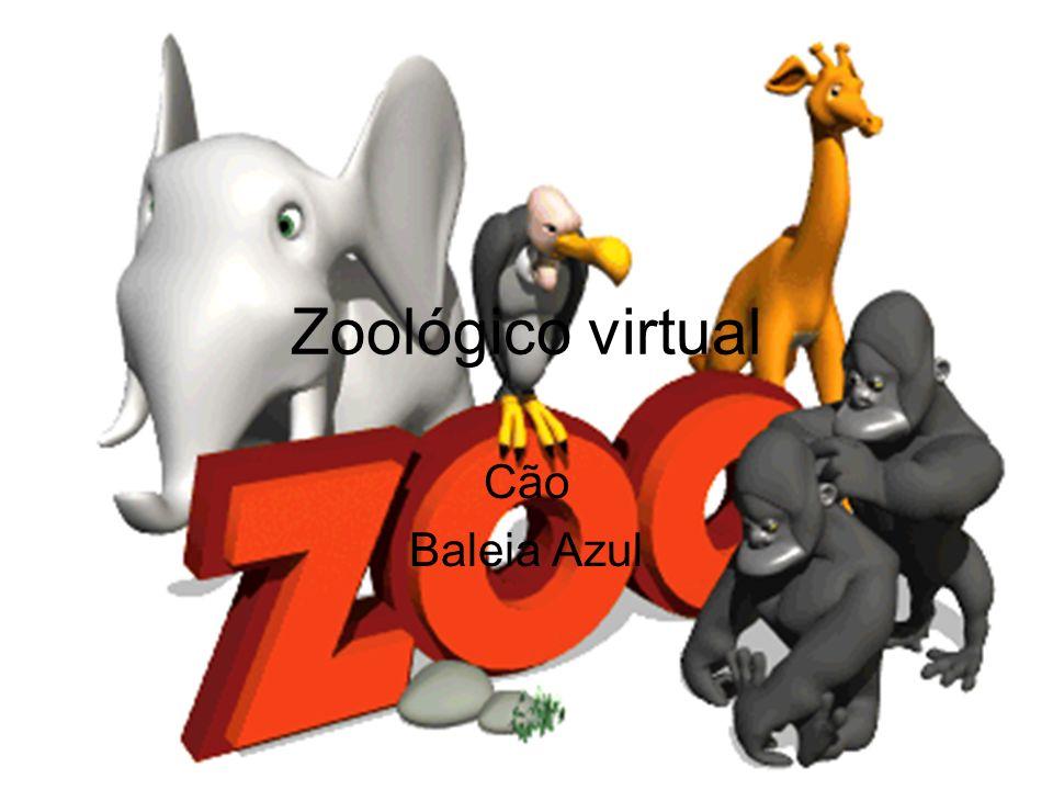 Zoológico virtual Cão Baleia Azul
