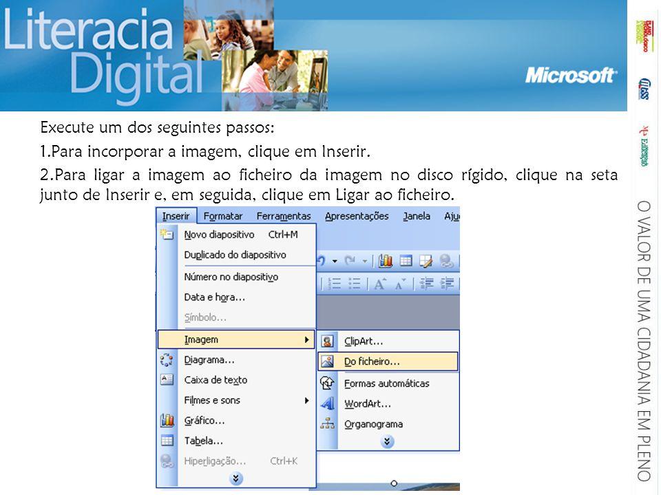 Execute um dos seguintes passos: 1.Para incorporar a imagem, clique em Inserir. 2.Para ligar a imagem ao ficheiro da imagem no disco rígido, clique na