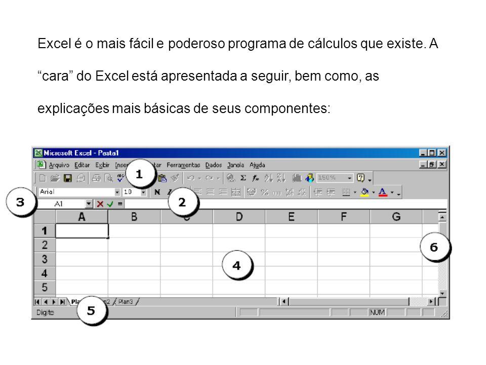 Excel é o mais fácil e poderoso programa de cálculos que existe. A cara do Excel está apresentada a seguir, bem como, as explicações mais básicas de s