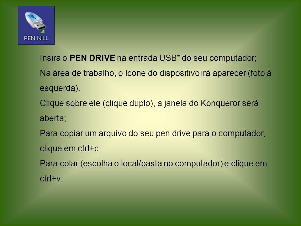 Insira o PEN DRIVE na entrada USB* do seu computador; Na área de trabalho, o ícone do dispositivo irá aparecer (foto à esquerda). Clique sobre ele (cl