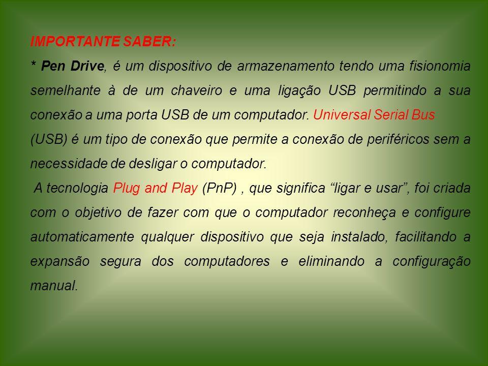 IMPORTANTE SABER: * Pen Drive, é um dispositivo de armazenamento tendo uma fisionomia semelhante à de um chaveiro e uma ligação USB permitindo a sua c