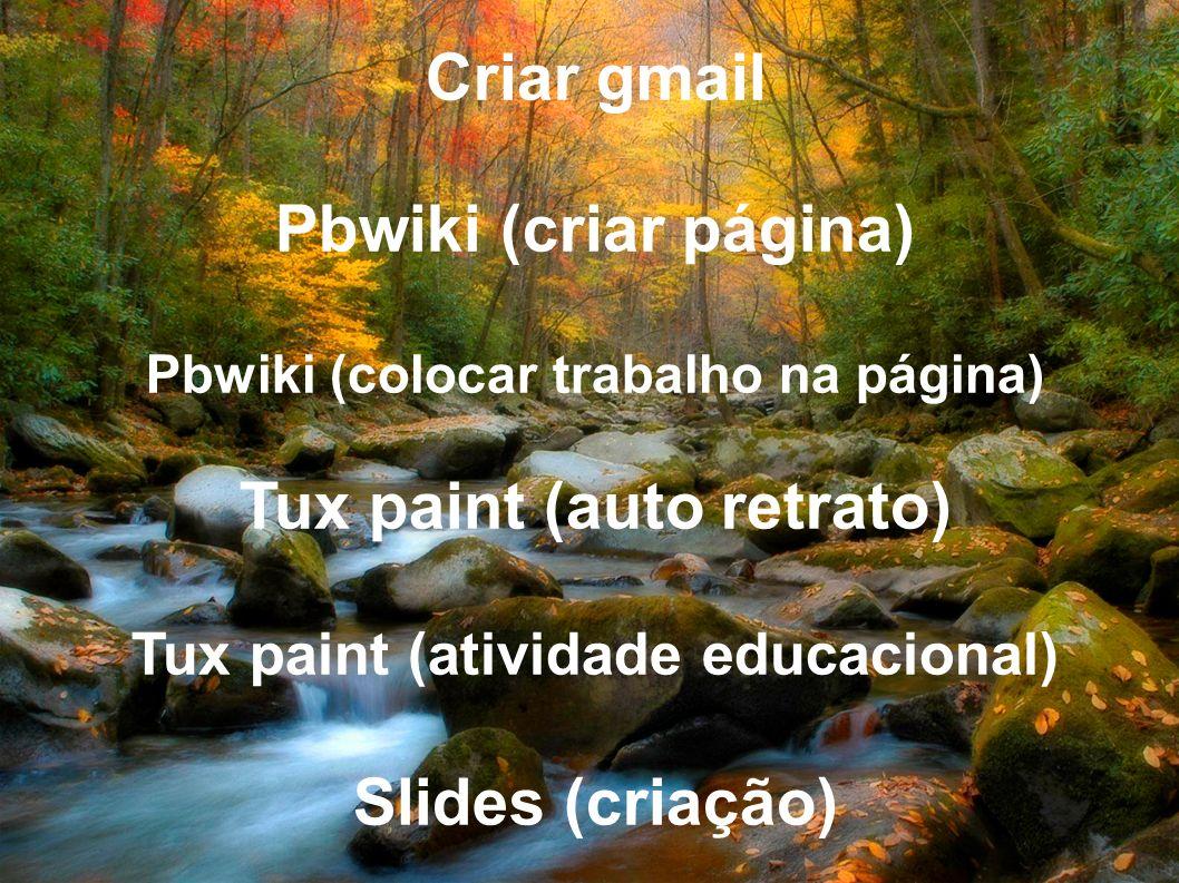 Criar gmail Pbwiki (criar página) Pbwiki (colocar trabalho na página) Tux paint (auto retrato) Tux paint (atividade educacional) Slides (criação)
