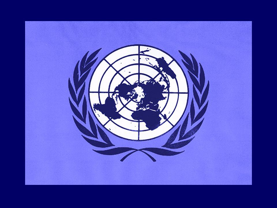 A ESTRUTURA DA ONU Atualmente, a instituição conta com mais de 190 países membros, espalhados por todos os continentes, que se reúnem anualmente na Assembléia Geral.