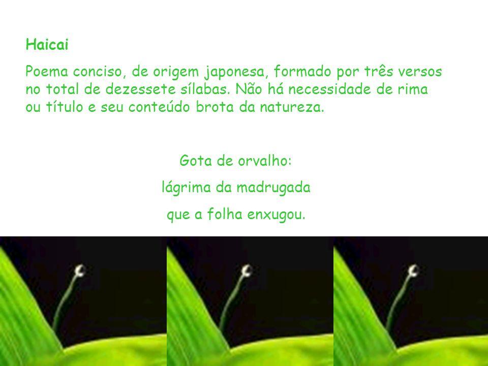 Haicai Poema conciso, de origem japonesa, formado por três versos no total de dezessete sílabas. Não há necessidade de rima ou título e seu conteúdo b