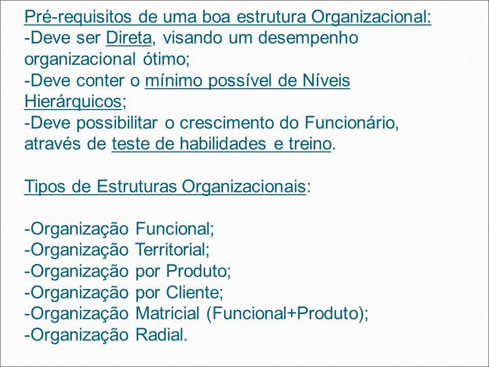 Pré-requisitos de uma boa estrutura Organizacional: -Deve ser Direta, visando um desempenho organizacional ótimo; -Deve conter o mínimo possível de Ní