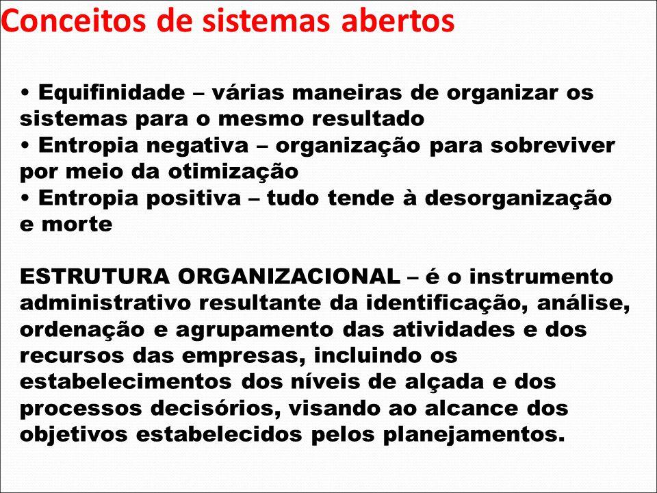 Conceitos de sistemas abertos Equifinidade – várias maneiras de organizar os sistemas para o mesmo resultado Entropia negativa – organização para sobr