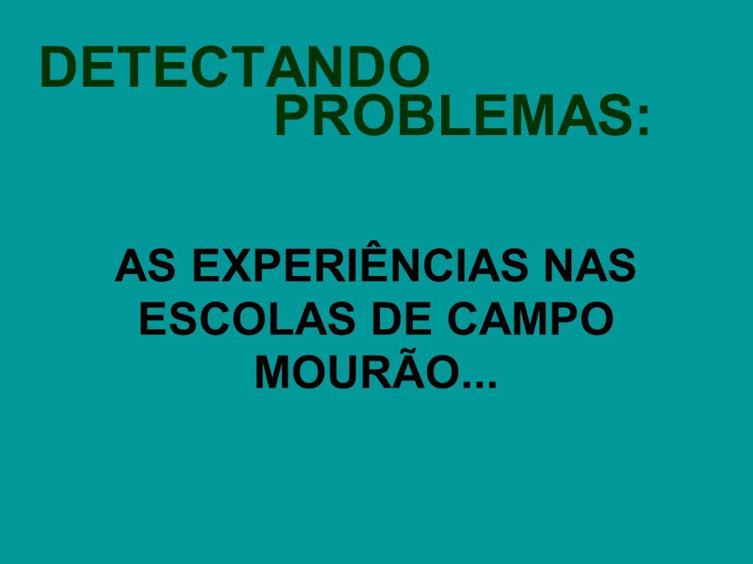 DETECTANDO PROBLEMAS: AS EXPERIÊNCIAS NAS ESCOLAS DE CAMPO MOURÃO...
