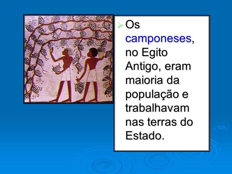 Os camponeses, no Egito Antigo, eram maioria da população e trabalhavam nas terras do Estado. Os camponeses, no Egito Antigo, eram maioria da populaçã