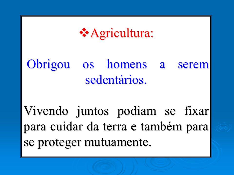 Agricultura: Obrigou os homens a serem sedentários. Vivendo juntos podiam se fixar para cuidar da terra e também para se proteger mutuamente. Agricult