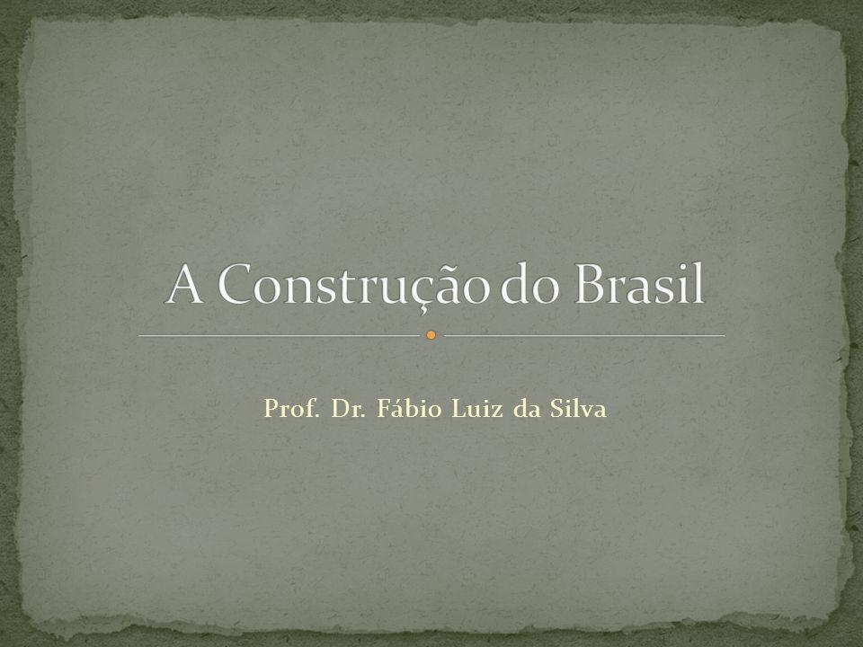 Prof. Dr. Fábio Luiz da Silva