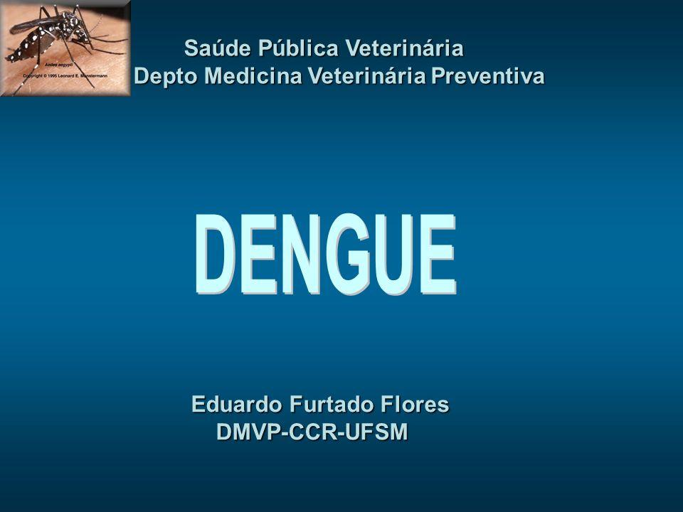 Eduardo Furtado Flores DMVP-CCR-UFSM DMVP-CCR-UFSM Saúde Pública Veterinária Saúde Pública Veterinária Depto Medicina Veterinária Preventiva