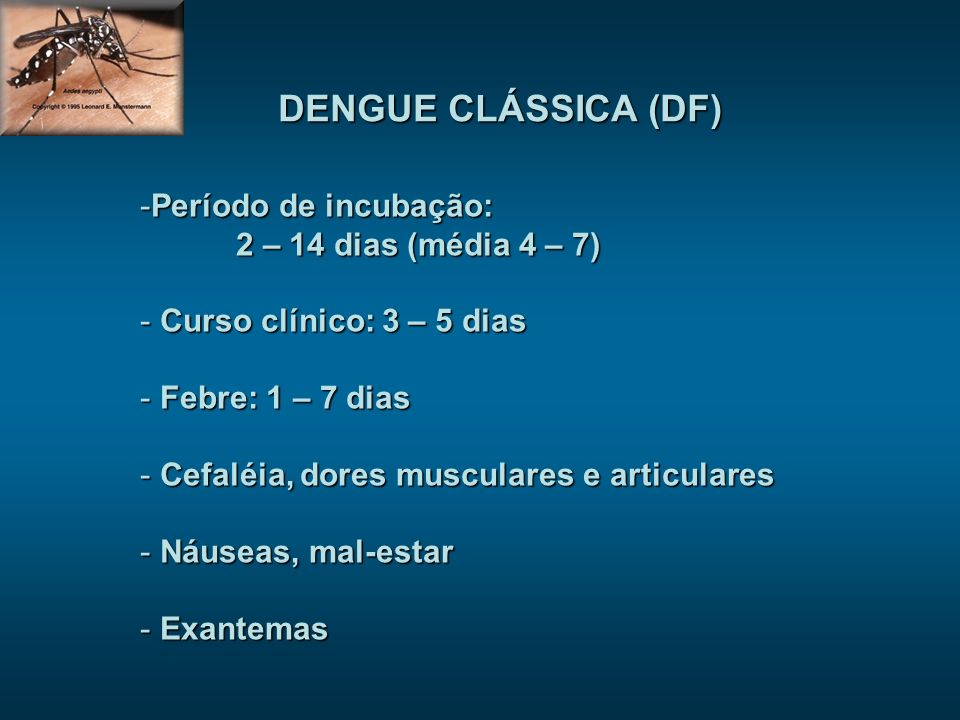 DENGUE CLÁSSICA (DF) -Período de incubação: 2 – 14 dias (média 4 – 7) - Curso clínico: 3 – 5 dias - Febre: 1 – 7 dias - Cefaléia, dores musculares e articulares - Náuseas, mal-estar - Exantemas
