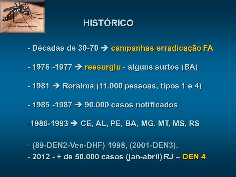 HISTÓRICO - Décadas de 30-70 campanhas erradicação FA - 1976 -1977 ressurgiu - alguns surtos (BA) - 1981 Roraima (11.000 pessoas, tipos 1 e 4) - 1985 -1987 90.000 casos notificados -1986-1993 CE, AL, PE, BA, MG, MT, MS, RS - (89-DEN2-Ven-DHF) 1998, (2001-DEN3), - 2012 - + de 50.000 casos (jan-abril) RJ – DEN 4
