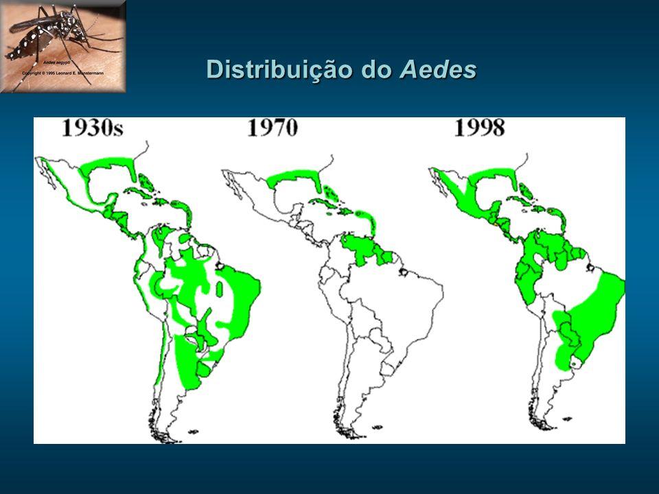 Fatores biológicos - Capacidade de reprodução do Aedes - Transmissão transovariana - Ritmo de reprodução acelerado - Período de transmissão longo (vários dias) - Calor úmido > oviposição acelerada > maior voracidade RE-EMERGÊNCIA DA DENGUE