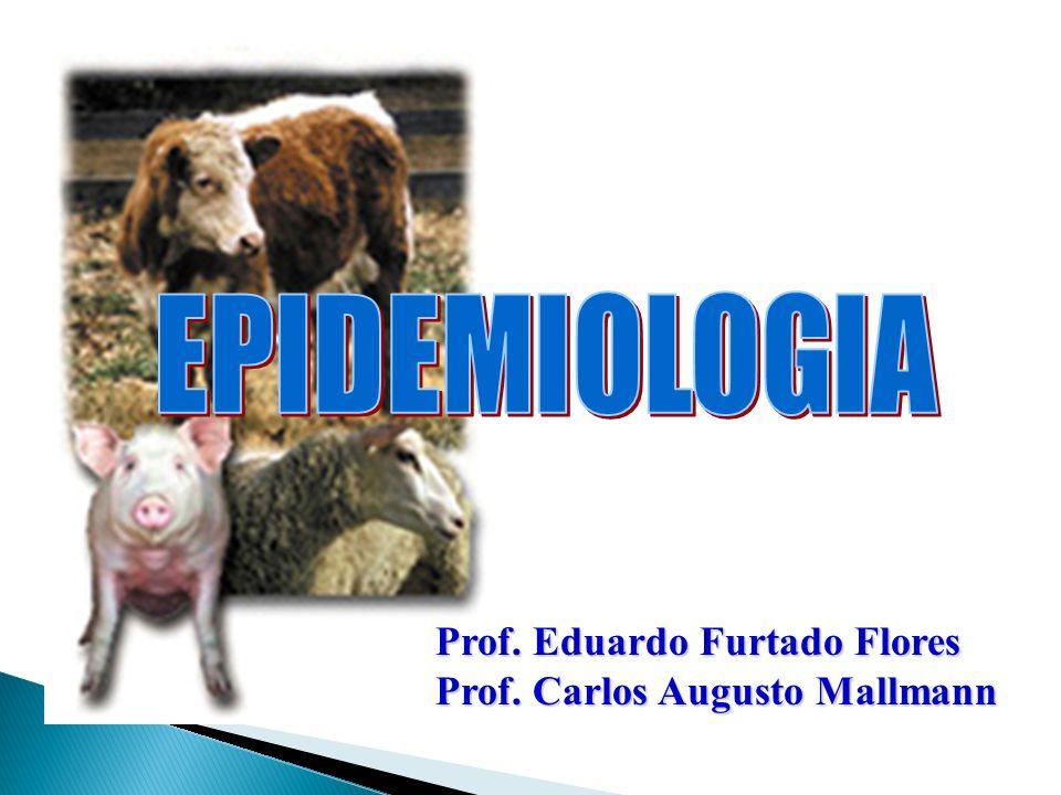 OUTROS PADRÕES - Doenças Epiendêmicas - Variações (flutuações) Endêmicas - Sazonais - Cíclicas - Tendências seculares