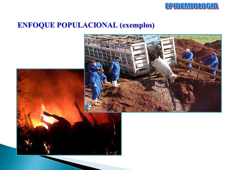 ENFOQUE POPULACIONAL (exemplos)