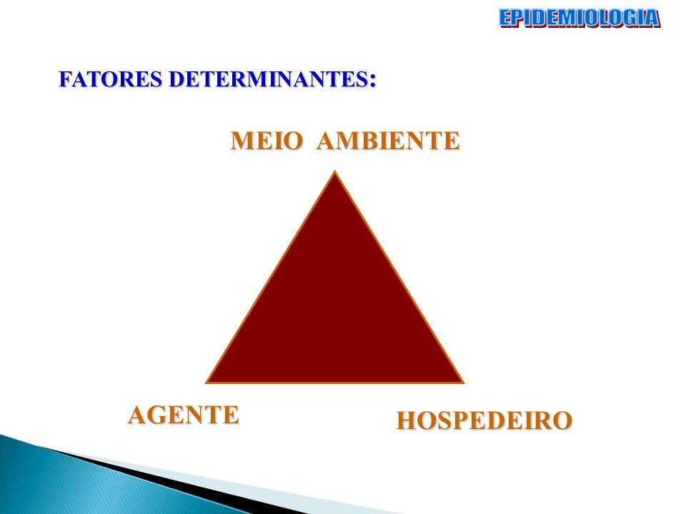 MEIO AMBIENTE AGENTE HOSPEDEIRO FATORES DETERMINANTES :