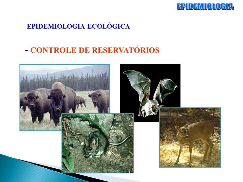 EPIDEMIOLOGIA ECOLÓGICA - CONTROLE DE RESERVATÓRIOS