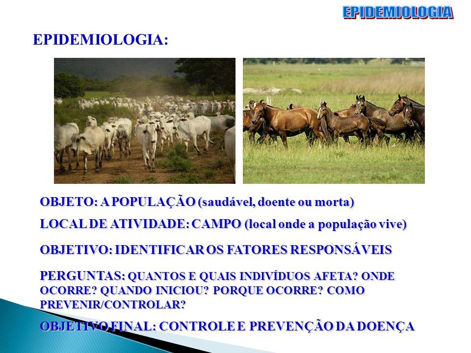 EPIDEMIOLOGIA: OBJETO: A POPULAÇÃO (saudável, doente ou morta) LOCAL DE ATIVIDADE: CAMPO (local onde a população vive) OBJETIVO: IDENTIFICAR OS FATORE