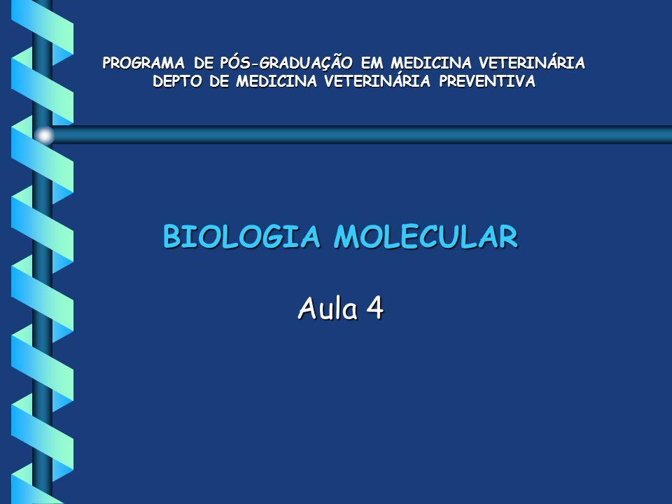 BIOLOGIA MOLECULAR Aula 4 PROGRAMA DE PÓS-GRADUAÇÃO EM MEDICINA VETERINÁRIA DEPTO DE MEDICINA VETERINÁRIA PREVENTIVA