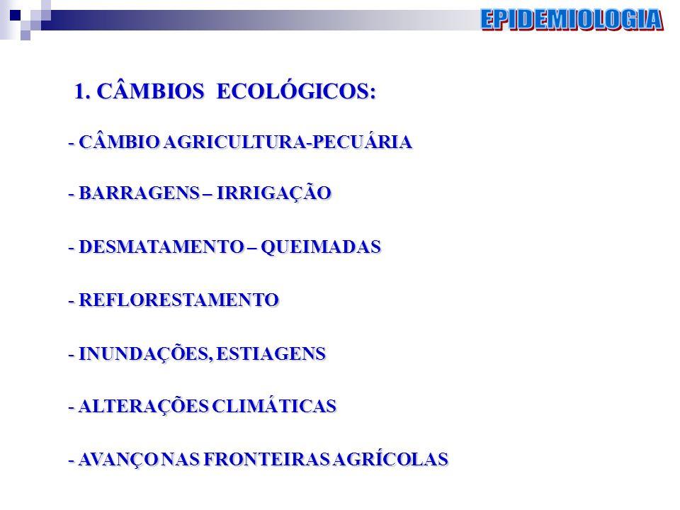 1. CÂMBIOS ECOLÓGICOS: - CÂMBIO AGRICULTURA-PECUÁRIA - BARRAGENS – IRRIGAÇÃO - DESMATAMENTO – QUEIMADAS - REFLORESTAMENTO - INUNDAÇÕES, ESTIAGENS - AL