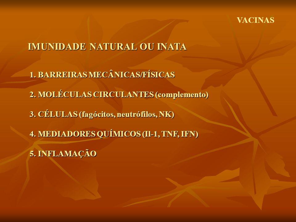 1. BARREIRAS MECÂNICAS/FÍSICAS 2. MOLÉCULAS CIRCULANTES (complemento) 3. CÉLULAS (fagócitos, neutrófilos, NK) 4. MEDIADORES QUÍMICOS (Il-1, TNF, IFN)