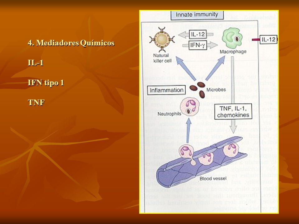VACINAS 4. Mediadores Químicos IL-1 IFN tipo 1 TNF