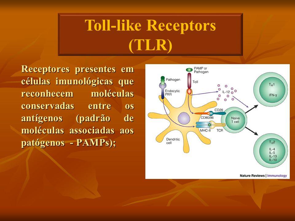 Receptores presentes em células imunológicas que reconhecem moléculas conservadas entre os antígenos (padrão de moléculas associadas aos patógenos - P