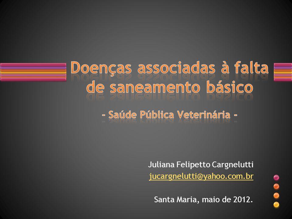 Juliana Felipetto Cargnelutti jucargnelutti@yahoo.com.br Santa Maria, maio de 2012.