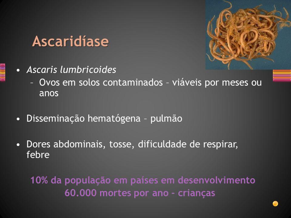 Ascaridíase Ascaris lumbricoides –Ovos em solos contaminados – viáveis por meses ou anos Disseminação hematógena – pulmão Dores abdominais, tosse, dif