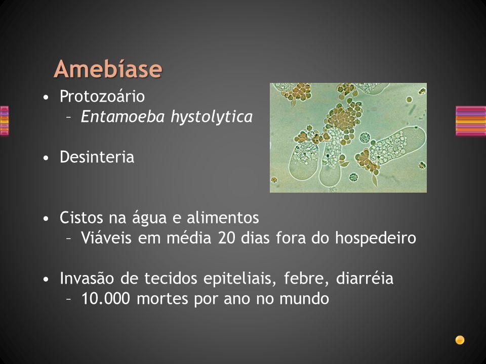 Amebíase Protozoário –Entamoeba hystolytica Desinteria Cistos na água e alimentos –Viáveis em média 20 dias fora do hospedeiro Invasão de tecidos epit