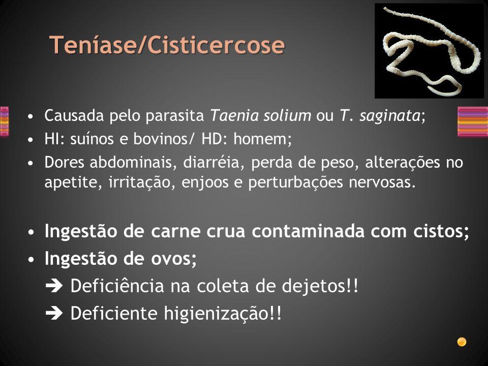 Teníase/Cisticercose Causada pelo parasita Taenia solium ou T. saginata; HI: suínos e bovinos/ HD: homem; Dores abdominais, diarréia, perda de peso, a