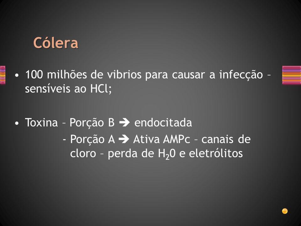 Cólera 100 milhões de vibrios para causar a infecção – sensíveis ao HCl; Toxina – Porção B endocitada - Porção A Ativa AMPc – canais de cloro – perda