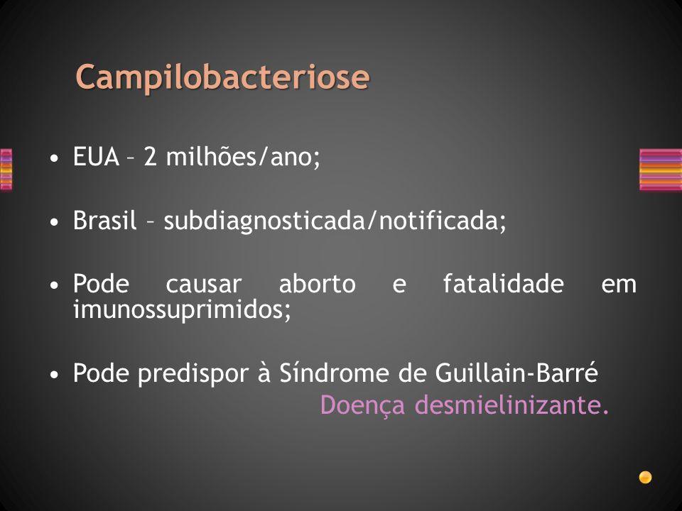 Campilobacteriose EUA – 2 milhões/ano; Brasil – subdiagnosticada/notificada; Pode causar aborto e fatalidade em imunossuprimidos; Pode predispor à Sín