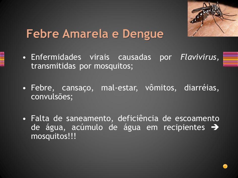 Febre Amarela e Dengue Enfermidades virais causadas por Flavivirus, transmitidas por mosquitos; Febre, cansaço, mal-estar, vômitos, diarréias, convuls