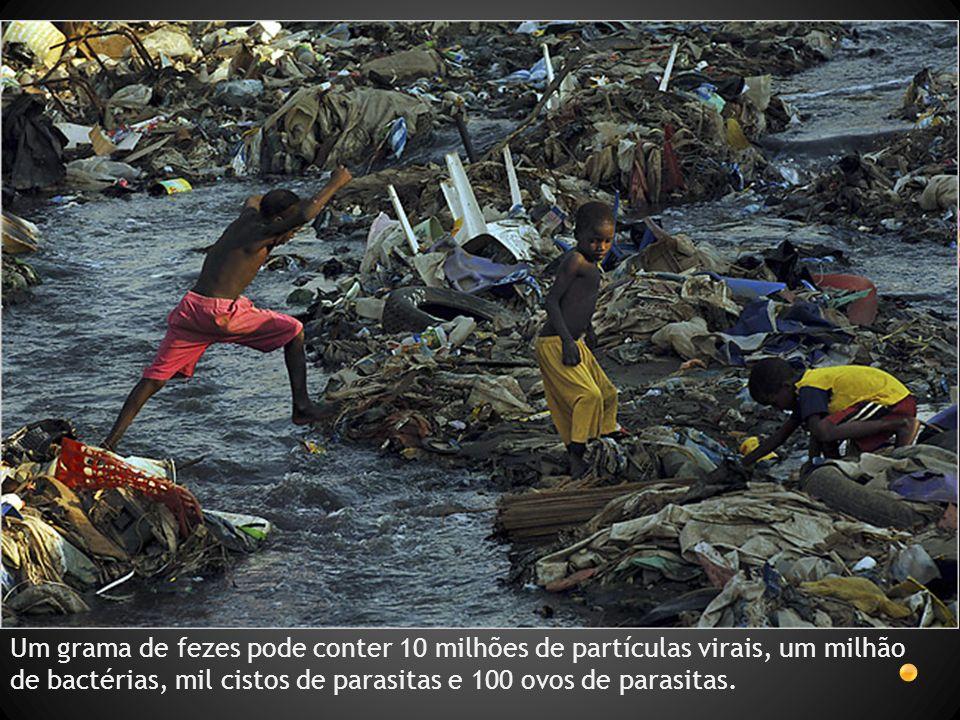 Cólera Vibrio cholerae *Toxina Bactéria, Gram - Doença de humanos, não tem animais reservatórios 7 pandemias desde século 19 HAITI - 2010 15 de dezembro de 2010 117.580 casos confirmados de cólera com 2.481 óbitos