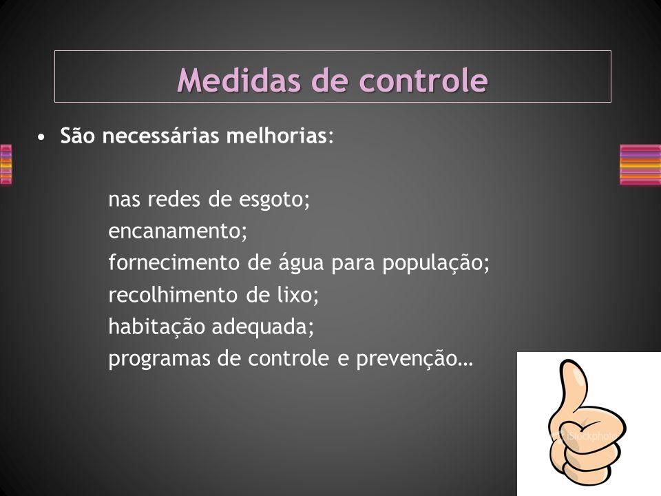 Medidas de controle São necessárias melhorias: nas redes de esgoto; encanamento; fornecimento de água para população; recolhimento de lixo; habitação