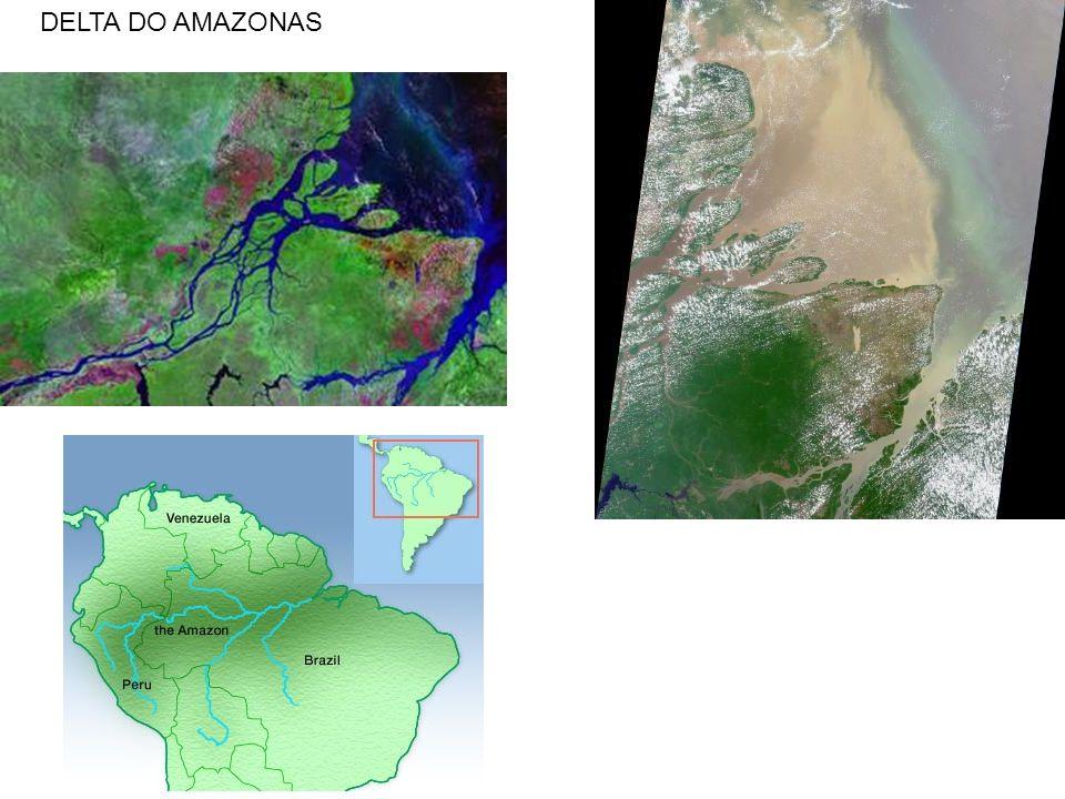 DELTA DO AMAZONAS
