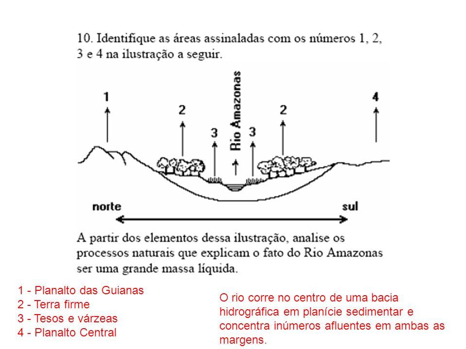 1 - Planalto das Guianas 2 - Terra firme 3 - Tesos e várzeas 4 - Planalto Central O rio corre no centro de uma bacia hidrográfica em planície sedimentar e concentra inúmeros afluentes em ambas as margens.