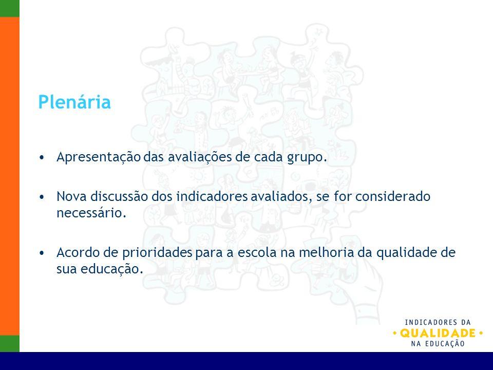 Plenária Apresentação das avaliações de cada grupo. Nova discussão dos indicadores avaliados, se for considerado necessário. Acordo de prioridades par