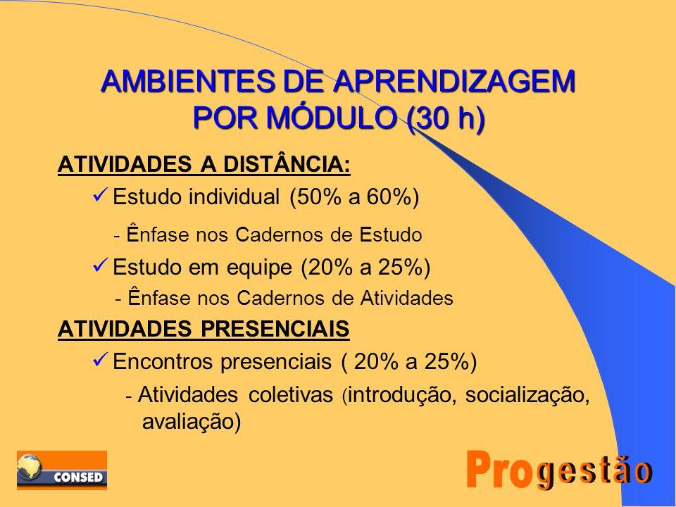 A Opção do Programa VÍNCULO COM A PRÁTICA SEM RENÚNCIA AOS FUNDAMENTOS TEÓRICOS; DESENVOLVIMENTO DE UM PADRÃO DE GESTÃO; APORTE PARA A CONSTRUÇÃO DE U
