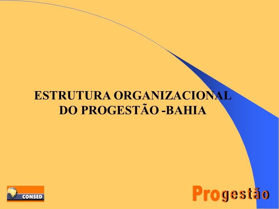 ESTRUTURA ORGANIZACIONAL DO PROGESTÃO -BAHIA