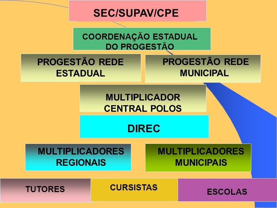 SEC/SUPAV/CPE COORDENAÇÃO ESTADUAL DO PROGESTÃO PROGESTÃO REDE ESTADUAL PROGESTÃO REDE MUNICIPAL MULTIPLICADOR CENTRAL POLOS DIREC MULTIPLICADORES REGIONAIS MULTIPLICADORES MUNICIPAIS TUTORES CURSISTAS ESCOLAS