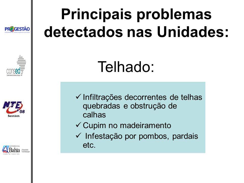 Principais problemas detectados nas Unidades: Infiltrações decorrentes de telhas quebradas e obstrução de calhas Cupim no madeiramento Infestação por