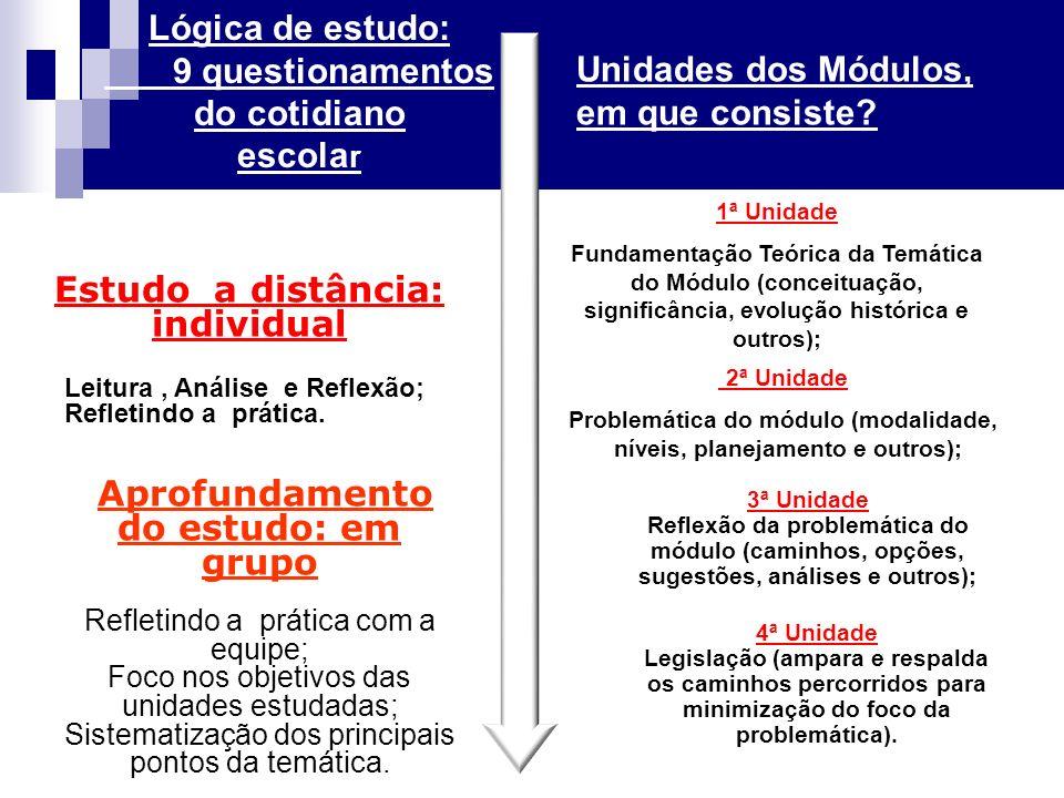 2ª Unidade Problemática do módulo (modalidade, níveis, planejamento e outros); Unidades dos Módulos, em que consiste.