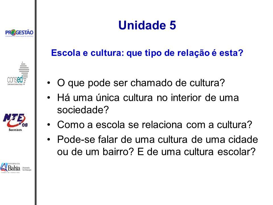 Unidade 5 Escola e cultura: que tipo de relação é esta? O que pode ser chamado de cultura? Há uma única cultura no interior de uma sociedade? Como a e