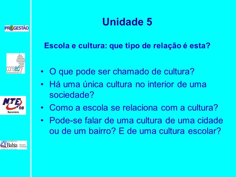 O que pode ser chamado de cultura? Há uma única cultura no interior de uma sociedade? Como a escola se relaciona com a cultura? Pode-se falar de uma c